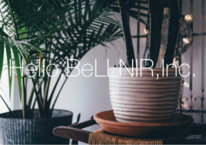 Hello,BeLLNIR,Inc.